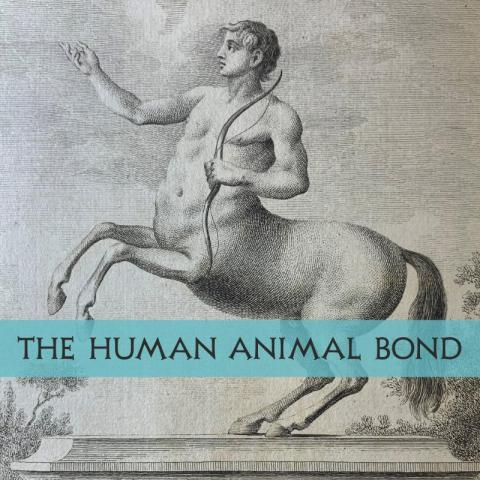 Title banner with centaur image from The History and Art of Horsemanship (1771)