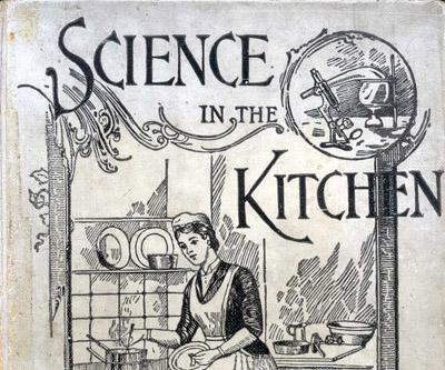 illustration of woman in apron cooking in kitchen